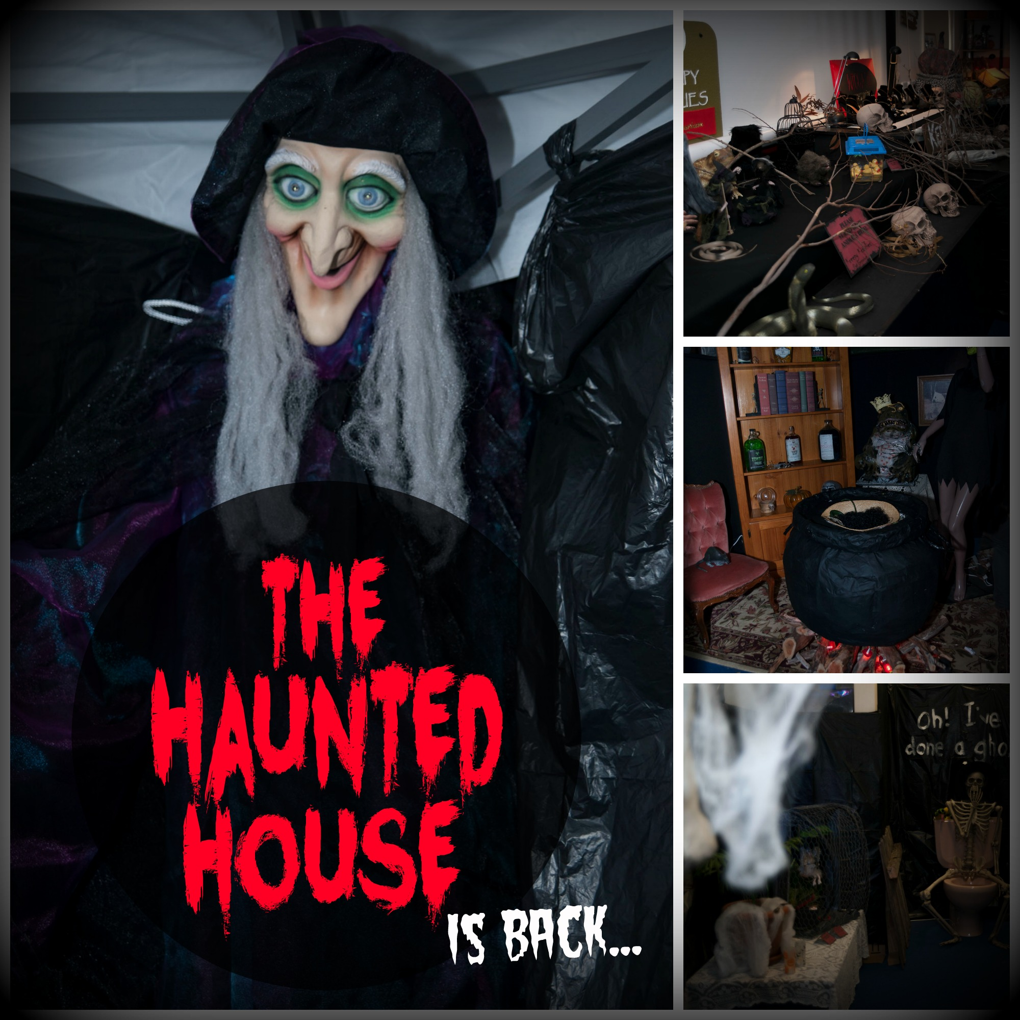 The Haunted House 2016 FB